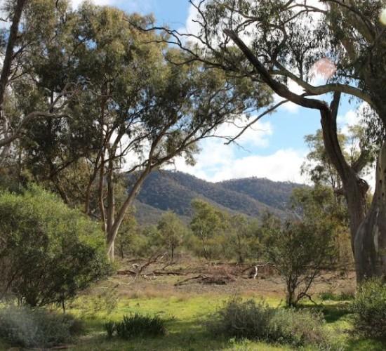 Camping - Kookaburra Creek Retreat
