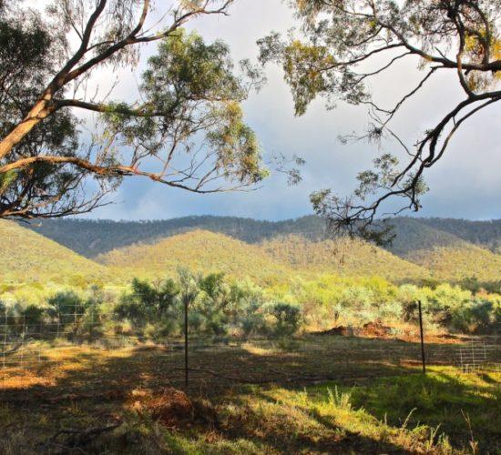 Mt Remarkable, Melrose South Australia